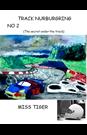 Track Nurburgring 2 (The secret under the track)